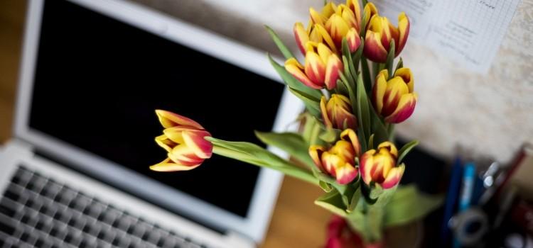comparatif des meilleurs fleuristes en ligne