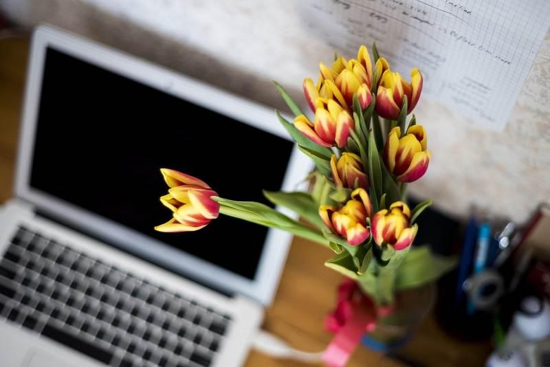 Offrez des fleurs comparatif des 5 meilleurs fleuristes for Fleuristes en ligne